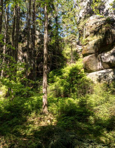 Riesengebirge - 110